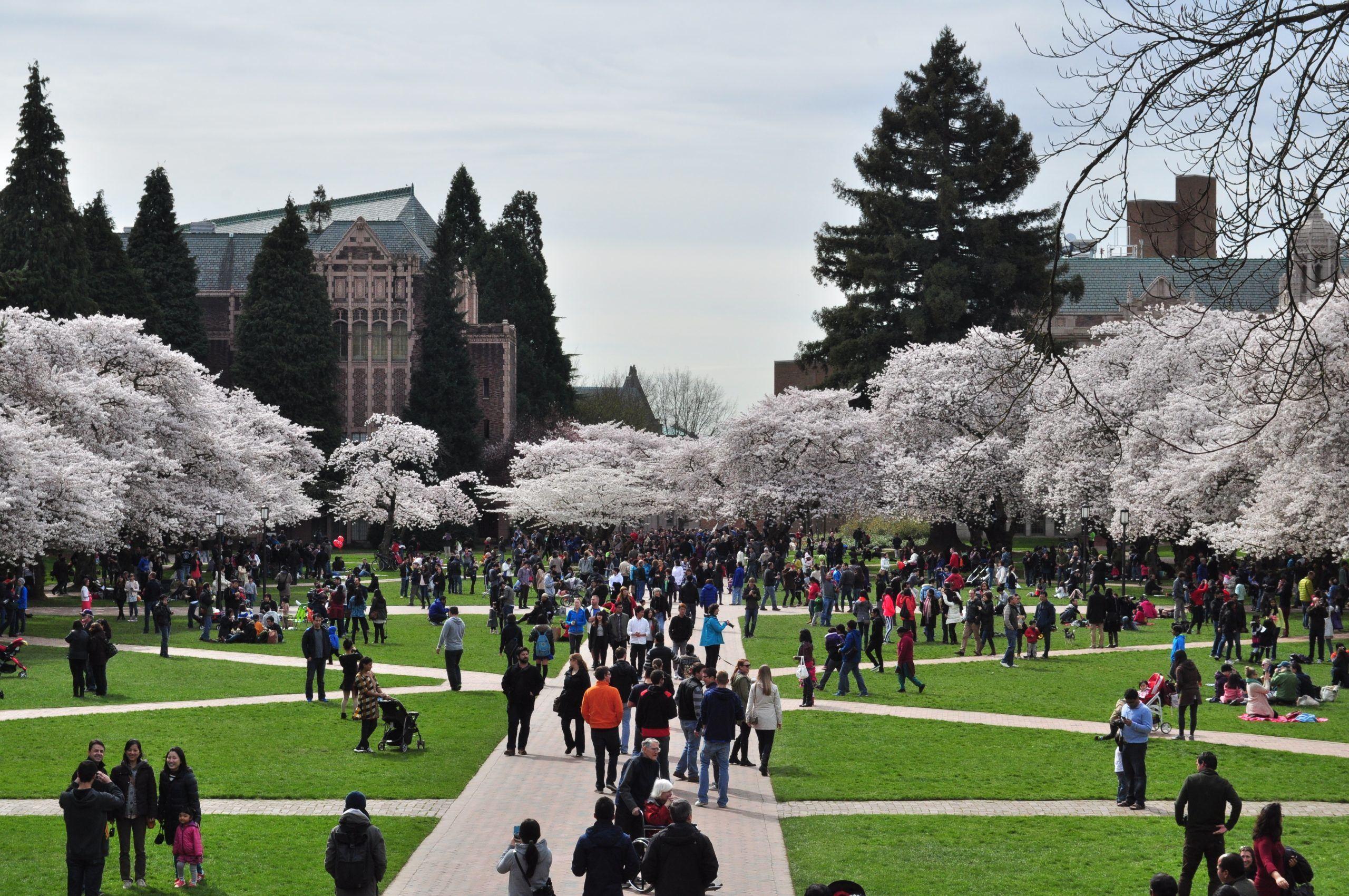 Students in University of Washington