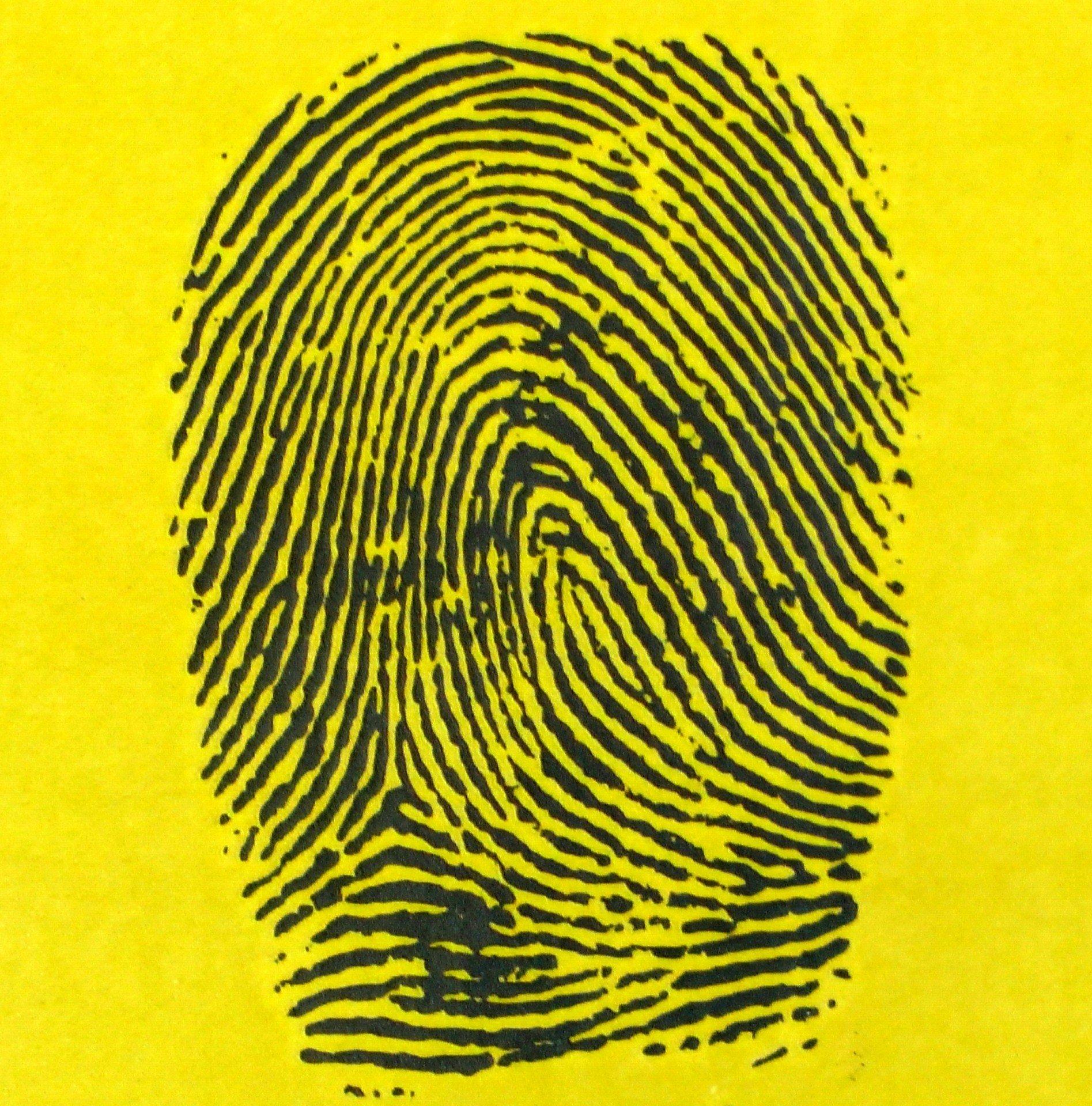 fingerprint on yellow background